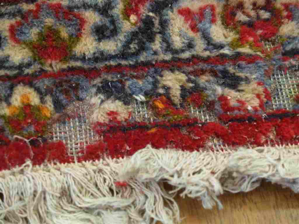 How to Prevent Moth Damage on Rugs and Carpets